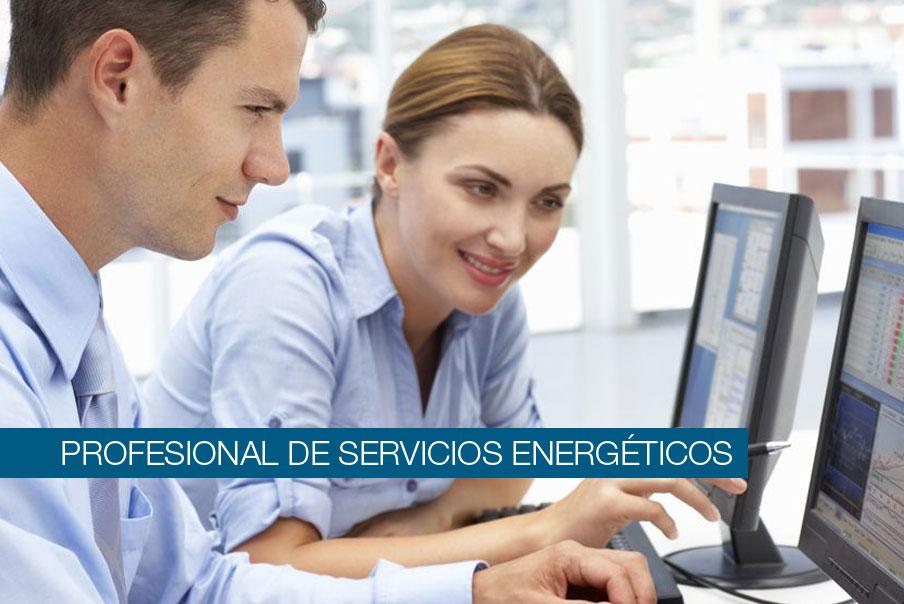 Profesional servicios energéticos